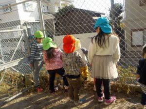 幼稚園の様子